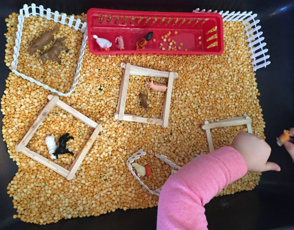 Farm Animal Activities in the Preschool Classroom - Farm Sensory Bin