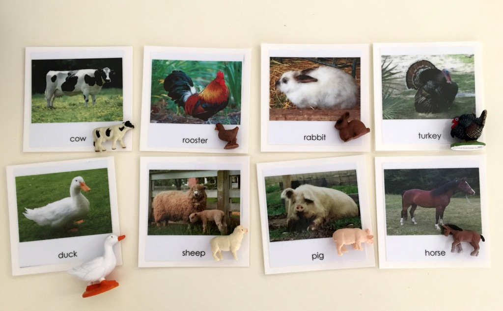 Farm Animal Activities in the Preschool Classroom - Matching Farm Animals