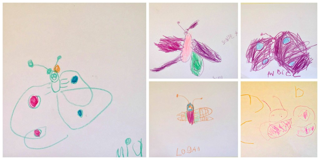 Drawing in the Preschool Classroom - Butterflies