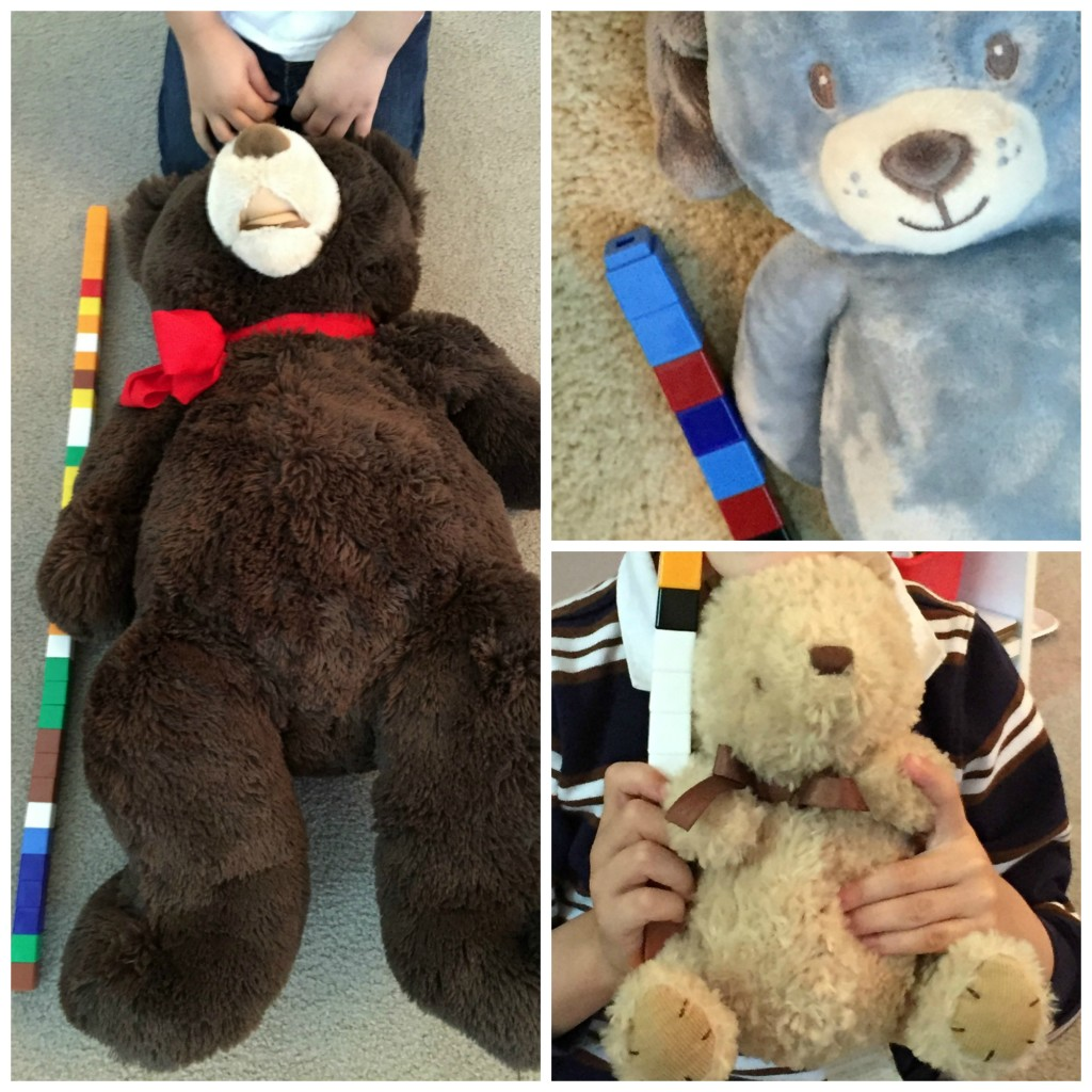 Teddy Bear Day activities for Preschoolers - Measuring Teddy Bears