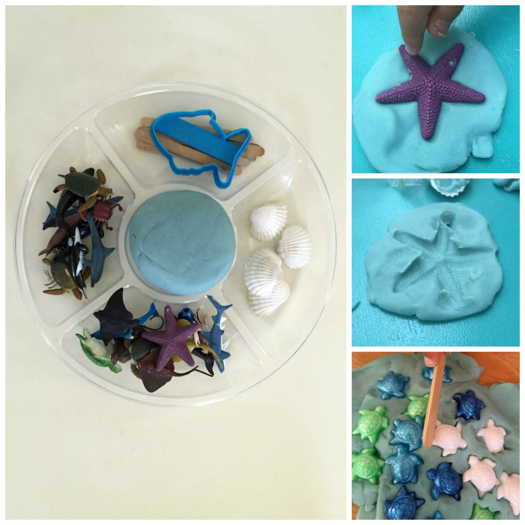 Ocean Habitat - Playdough