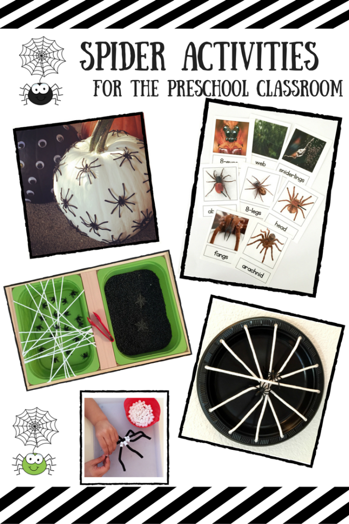 Spider Activities For the Preschool Classroom